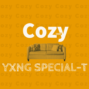 """YXNG SPECIAL-T DROPS SMOOTH LAID-BACK TRACK """"COZY"""""""